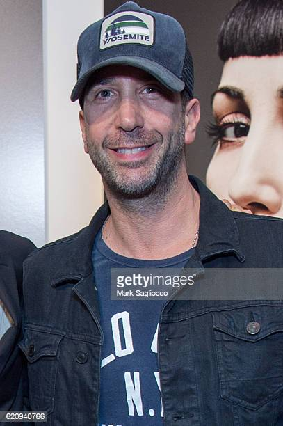 Actor David Schwimmer attends 'Diverse Beauty' Book Launch Exhibition Opening at Milk Gallery on November 3 2016 in New York City