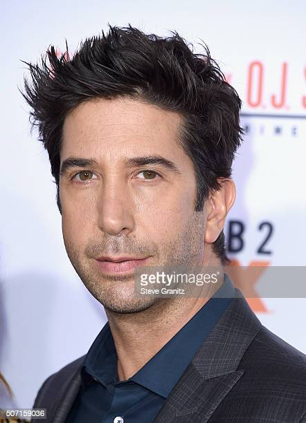 Actor David Schwimmer attends the premiere of FX's American Crime Story The People V OJ Simpson at Westwood Village Theatre on January 27 2016 in...