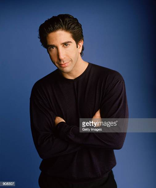 "Actor David Schwimmer stars as Ross Geller in NBC's comedy series ""Friends."""