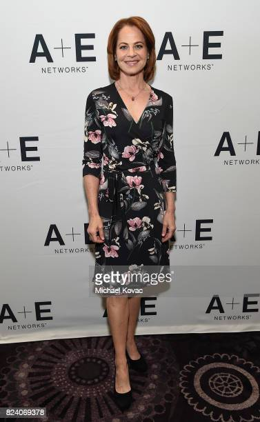 Actor Deirdre Lovejoy of 'I Am Elizabeth Smart' at the A+E Networks portion of the 2017 Summer Television Critics Association Press Tour at The...