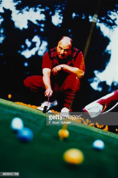 Actor Dennis Franz is photographed in 1993