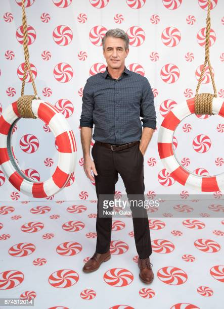 Actor Dermot Mulroney attends the opening of Hallmark's Museum of Christmas on November 14 2017 in New York City