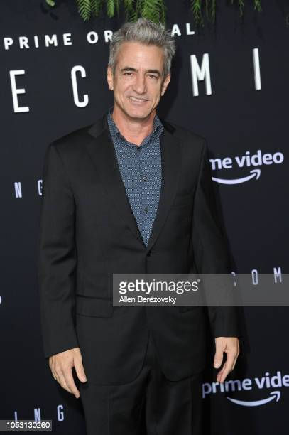Actor Dermot Mulroney attends the premiere of Amazon Studios' Homecoming at Regency Bruin Theatre on October 24 2018 in Los Angeles California