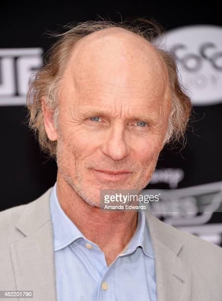 Actor Ed Harris arrives at the Los Angeles premiere of Disney's Planes Fire Rescue at the El Capitan Theatre on July 15 2014 in Hollywood California