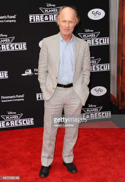 Actor Ed Harris attends the premiere of Planes Fire Rescue at the El Capitan Theatre on July 15 2014 in Hollywood California