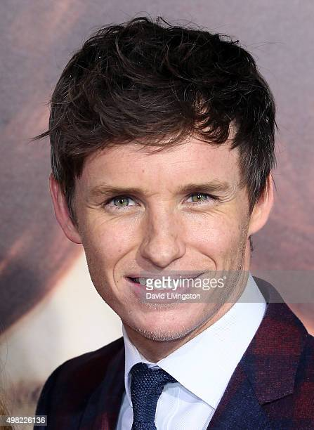 Actor Eddie Redmayne attends the premiere of Focus Features' The Danish Girl at the Regency Village Theatre on November 21 2015 in Westwood California