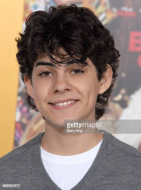 Actor Emjay Anthony attends the premiere of STX Entertainment's 'A Bad Mom's Christmas' at Regency Village Theatre on October 30 2017 in Westwood...
