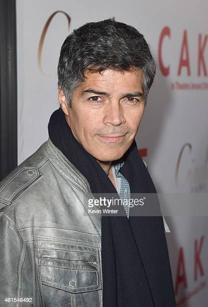 Actor Esai Morales attends the premiere of Cinelou Films' 'Cake' at ArcLight Cinemas on January 14 2015 in Hollywood California