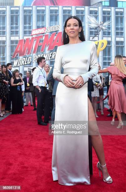 Actor Evangeline Lilly attends the Los Angeles Global Premiere for Marvel Studios' 'AntMan And The Wasp' at the El Capitan Theatre on June 25 2018 in...