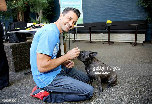 Actor Gilles Marini and his dog Mila celebrate the Green Works Muddy Puppy video premiere at the Palihouse Hotel in Los Angeles Calif on October 2...