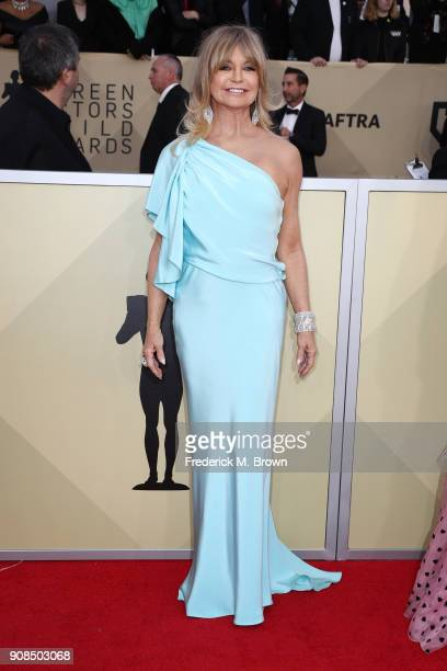 Actor Goldie Hawn attends the 24th Annual Screen Actors Guild Awards at The Shrine Auditorium on January 21 2018 in Los Angeles California 27522_017