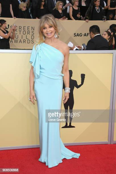 Actor Goldie Hawn attends the 24th Annual Screen Actors Guild Awards at The Shrine Auditorium on January 21 2018 in Los Angeles California