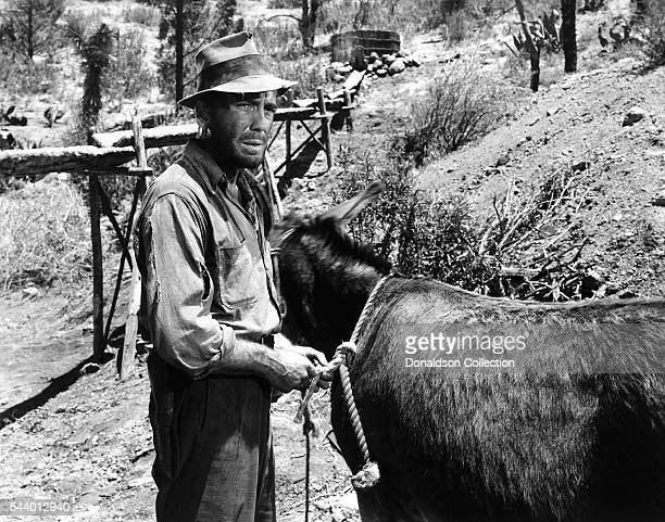 Actor Humphrey bogart poses for a publicity still for the Warner Bros/First National film 'The Treasure of the Sierra Madre' in 1948