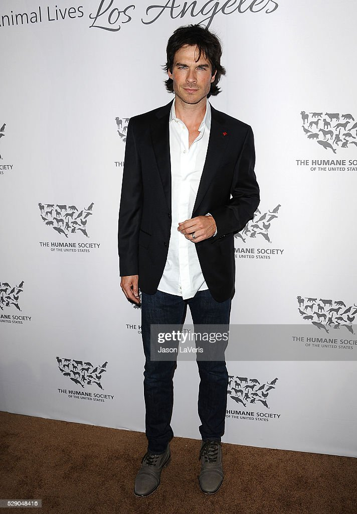 The Humane Society Of The United States' To The Rescue Gala - Arrivals : News Photo