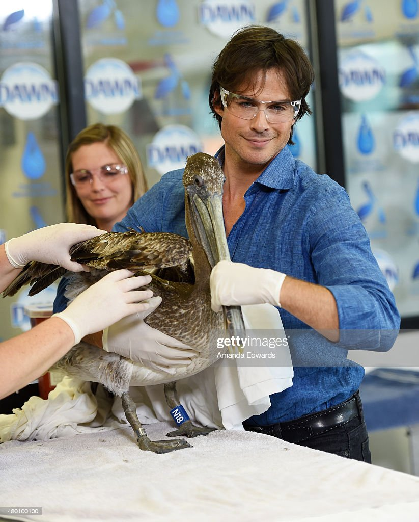 "Dawn Wildlife Debut Of ""We All Love Wildlife"" Video Series At International Bird Rescue"