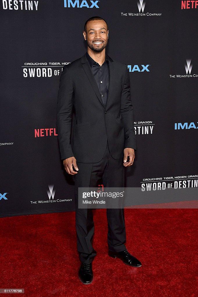 "Premiere Of Netflix's ""Crouching Tiger, Hidden Dragon: Sword Of Destiny"" - Arrivals"