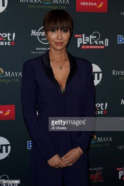 Actor Jackie Cruz attends the 5th Annual Premios PLATINO Of Iberoamerican Cinema Nominations Announcement at Hollywood Roosevelt Hotel on March 13...