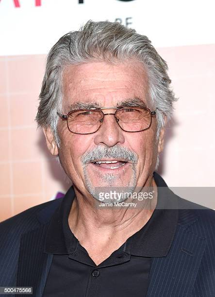 "Actor James Brolin attends the ""Sisters"" New York Premiere at Ziegfeld Theater on December 8, 2015 in New York City."