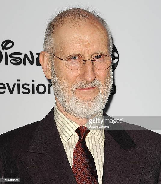 Actor James Cromwell attends the Disney Media Networks International Upfronts at Walt Disney Studios on May 19 2013 in Burbank California