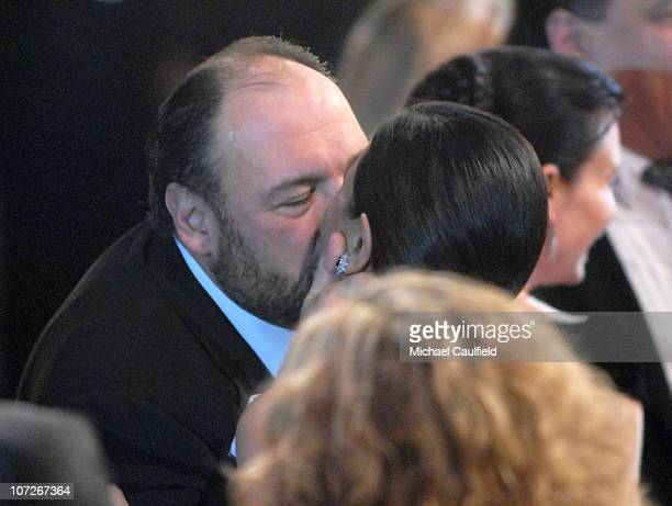 Actor James Gandolfini and Debra Lin in the audience at the TNT/TBS broadcast of the 14th Annual Screen Actors Guild Awards at the Shrine Auditorium...