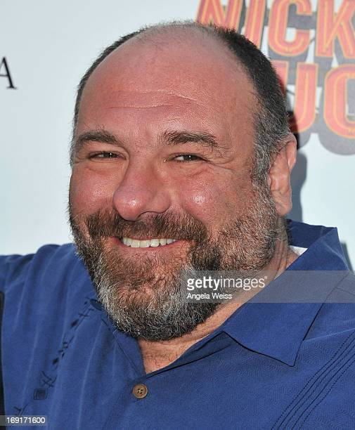 Actor James Gandolfini arrives at the premiere of Nickelodeon's 'Nicky Deuce' at ArcLight Cinemas on May 20 2013 in Hollywood California