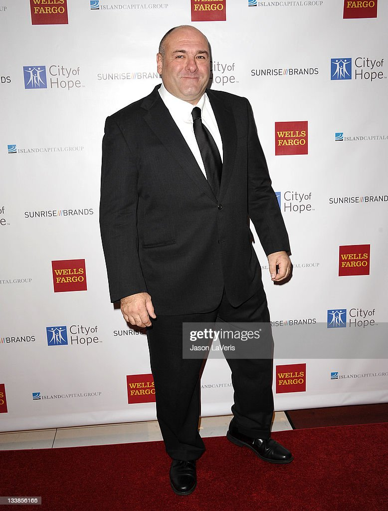 Actor James Gandolfini attends the 2011 City Of Hope Gala at Soho House on November 20, 2011 in West Hollywood, California.