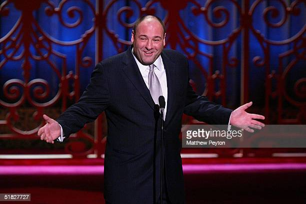 Actor James Gandolfini participates in the American Museum Of The Moving Image Salute To John Travolta at the Waldorf Astoria Hotel December 5 2004...