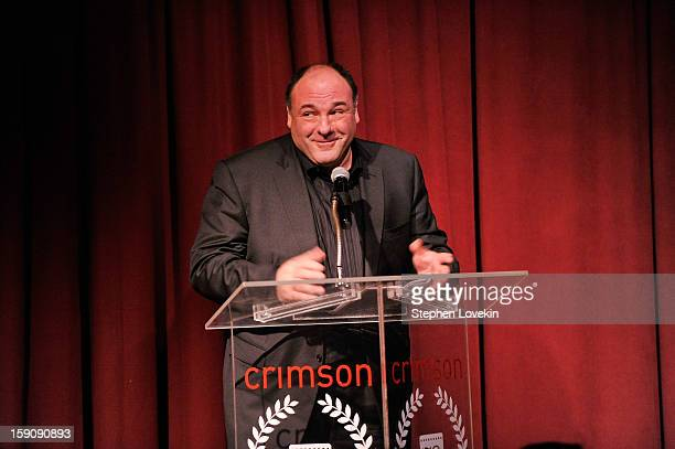 Actor James Gandolfini speaks onstage at the 2012 New York Film Critics Circle Awards at Crimson on January 7 2013 in New York City