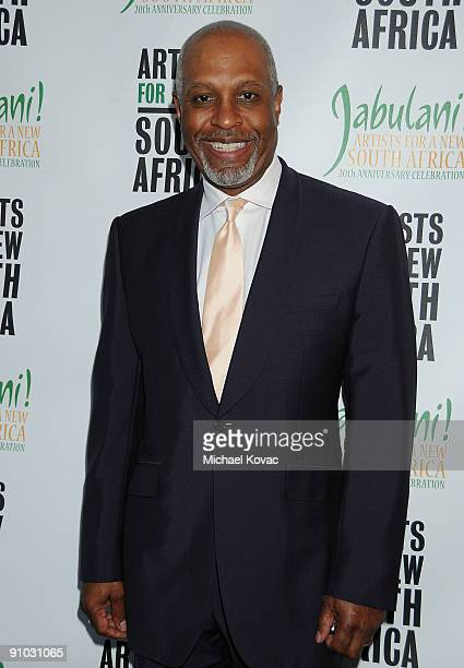 Actor James Pickens Jr attends 'Artists For A New South Africa Jabulani 20th Anniversary Celebration' at The Wiltern on September 22 2009 in Los...