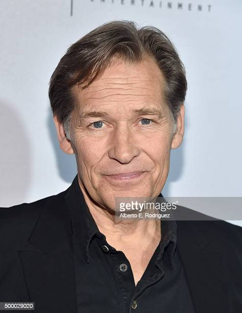 Actor James Remar attends the premiere of MTV and Sonar Entertainment's The Shannara Chronicles at iPic Theaters on December 4 2015 in Los Angeles...