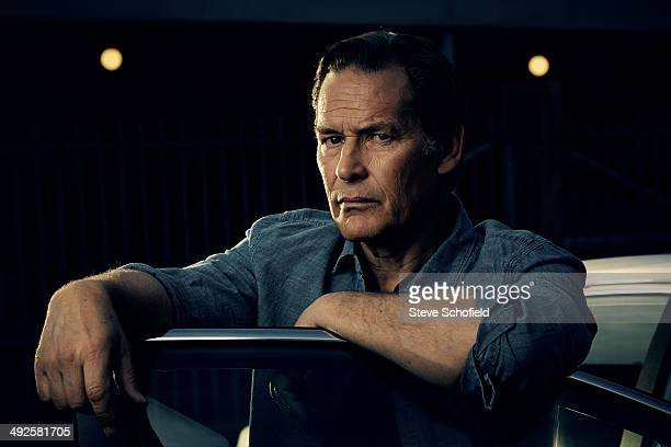 Actor James Remar is photographed on March 10 2014 in Los Angeles California