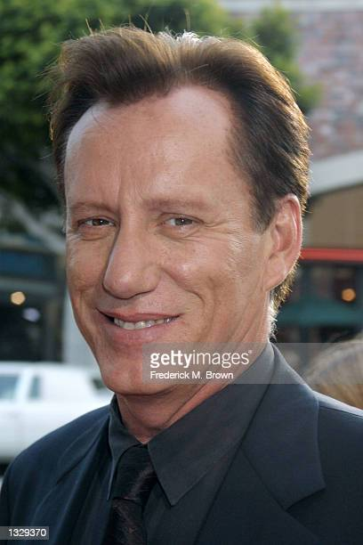 Actor James Woods arrives at the film premiere of Final Fantasy July 2 2001 in Los Angeles CA