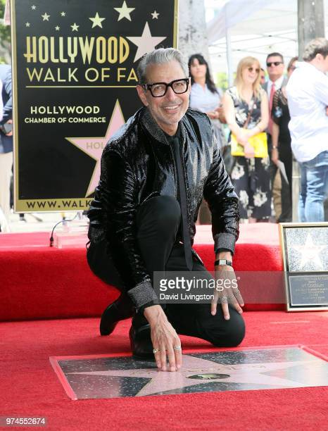 Actor Jeff Goldblum attends his being honored with a Star on the Hollywood Walk of Fame on June 14 2018 in Hollywood California