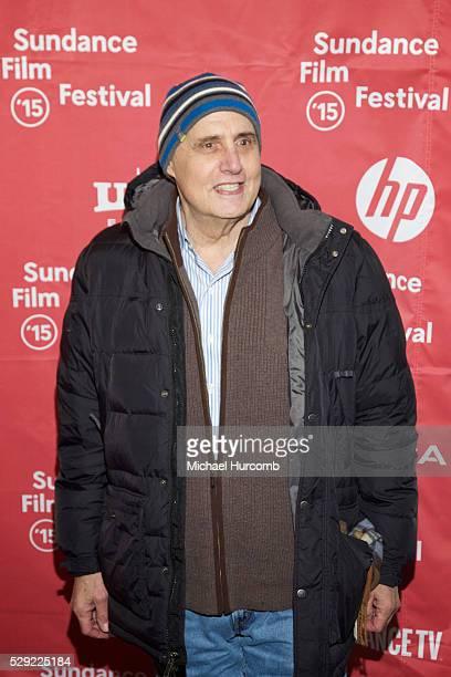 "Actor Jeffrey Tambor attends ""The D Train"" premiere at the 2015 Sundance Film Festival"