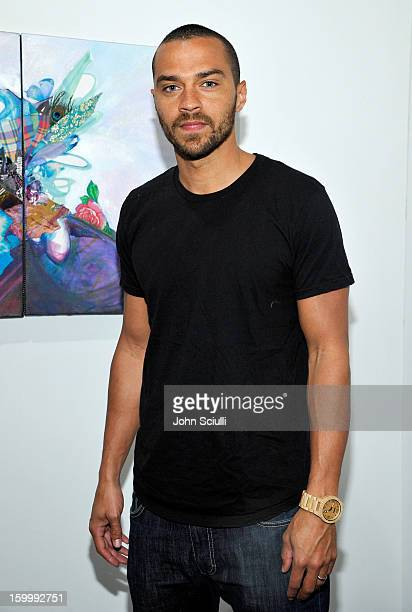 Actor Jesse Williams attends Art Los Angeles Contemporary opening night at Barker Hangar on January 24 2013 in Santa Monica California