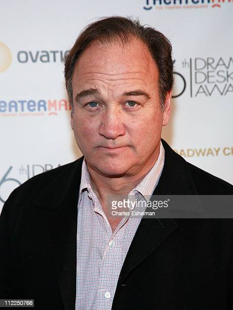 Actor Jim Belushi attends the Drama Desk Panel Discussion Film and TV Stars on New York Stage at Sardi's on April 15 2011 in New York City
