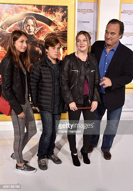 Actor Jim Belushi Jamison Bess Belushi and guests attend the premiere of Lionsgate's The Hunger Games Mockingjay Part 1 at Nokia Theatre LA Live on...