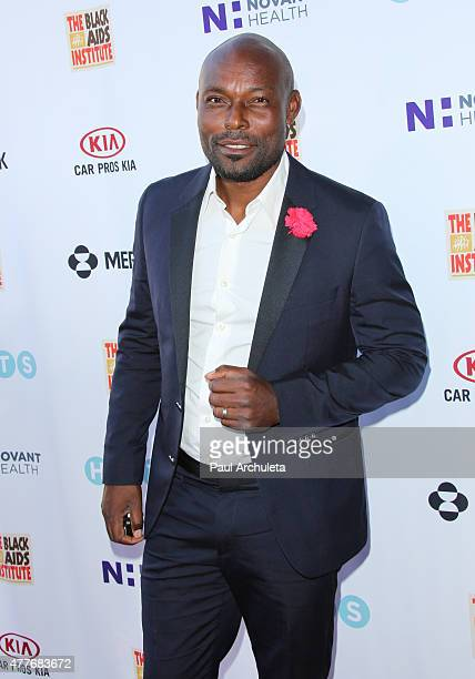 Actor Jimmy Jean Louis attends the Black AIDS Institutes 2015 Heroes In The Struggle gala reception and awards ceremony at The Directors Guild Of...