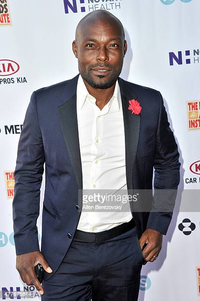 Actor Jimmy JeanLouis attends the Black AIDS Institute 2015 Heroes in the Struggle Reception Gala and Awards Ceremony at Directors Guild Of America...