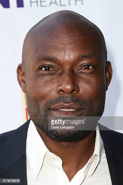 Actor Jimmy JeanLouis attends the Black AIDS Institute 2015 Heroes in the Struggle Gala Reception and Awards Ceremony at the Directors Guild of...
