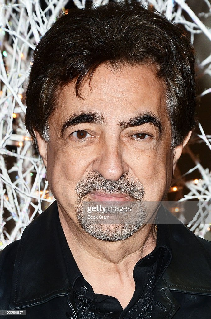 Actor Joe Mantegna is honored with the 2nd Annual Ernie Award at Borgnine Movie Star Gala at Sportman's Lodge on February 1, 2014 in Studio City, California.