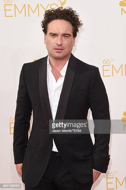 Actor Johnny Galecki attends the 66th Annual Primetime Emmy Awards held at Nokia Theatre LA Live on August 25 2014 in Los Angeles California
