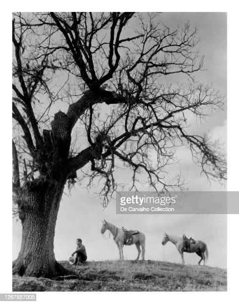 Actor Johnny Mack Brown as 'Larry Kerrigan' sitting on the grass by a picturesque tree and two standing horses in a scene from the movie that was...