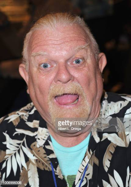Actor Johnny Whitaker attends The Hollywood Show held at The Westin Hotel LAX on July 28 2018 in Los Angeles California