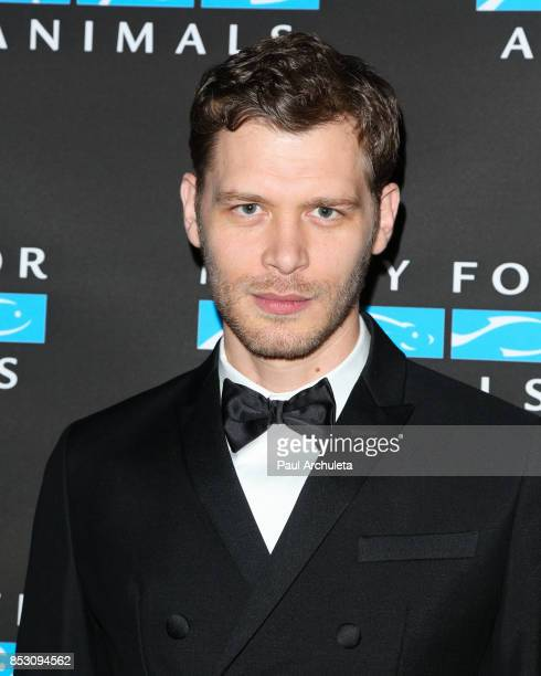 Actor Joseph Morgan attends the Mercy For Animals' Annual Hidden Heroes Gala at Vibiana on September 23, 2017 in Los Angeles, California.
