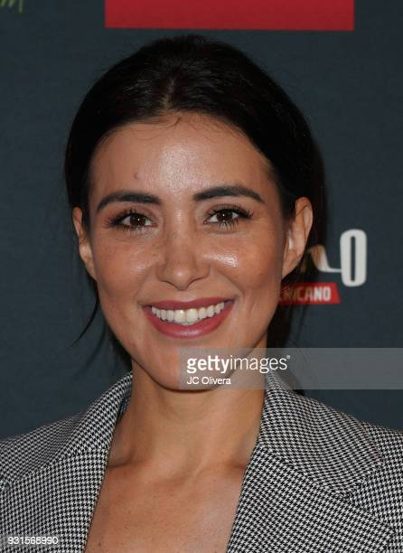Actor Karina Velazquez attends the 5th Annual Premios PLATINO Of Iberoamerican Cinema Nominations Announcement at Hollywood Roosevelt Hotel on March...