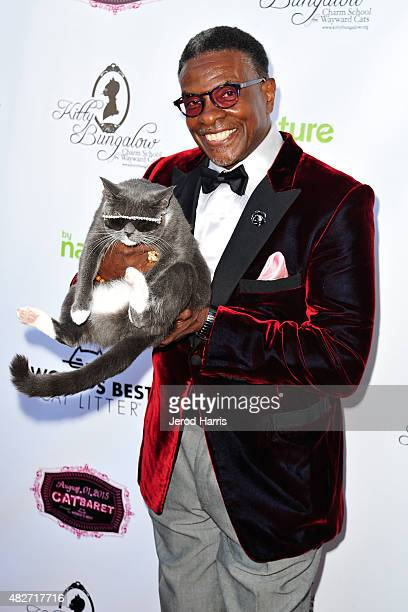 Actor Keith David attends the Kitty Bungalow Charm School for Wayward Cats presents CATbaret on August 1 2015 in Hollywood California