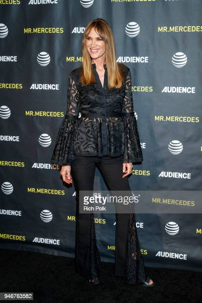 Actor Kelly Lynch attends a FYC Screening of Mr Mercedes at Hollywood Forever on April 15 2018 in Hollywood California