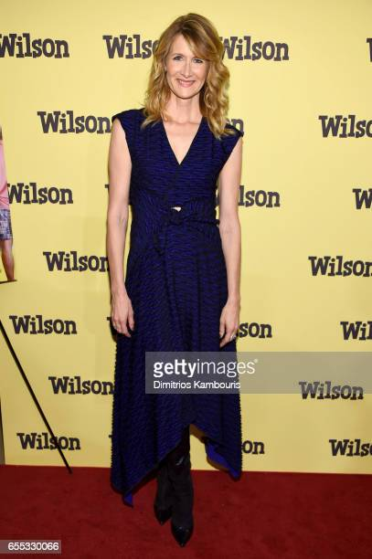 Actor Laura Dern attends the 'Wilson' New York Screening at the Whitby Hotel on March 19 2017 in New York City