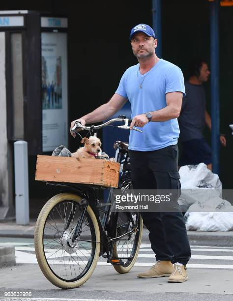 Actor Liev Schreiber is seen with his dog in Soho on May 29 2018 in New York City